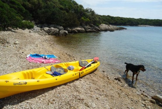 DOG WELCOME - Kamp Baldarin, Otok Cres